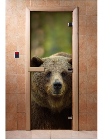 Дверь с фотопечатью A065