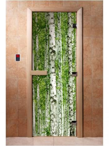 Дверь с фотопечатью A084