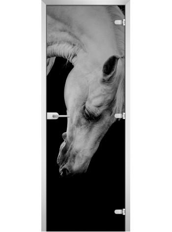 Стеклянная межкомнатная дверь Animals-11