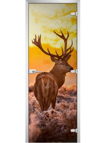 Стеклянная межкомнатная дверь Animals-16