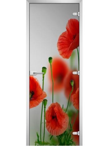 Стеклянная межкомнатная дверь Flowers-01