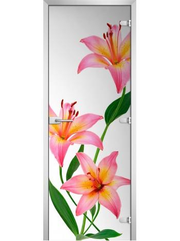 Стеклянная межкомнатная дверь Flowers-03