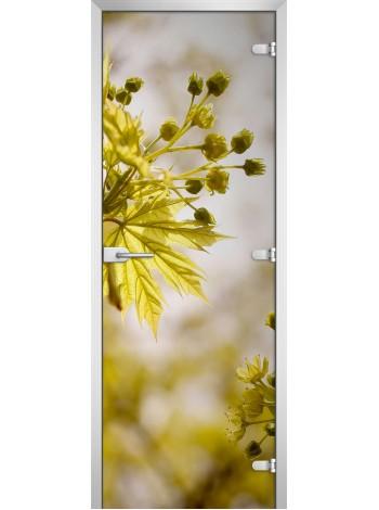Стеклянная межкомнатная дверь Flowers-09