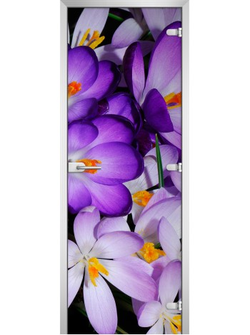 Стеклянная межкомнатная дверь Flowers-13