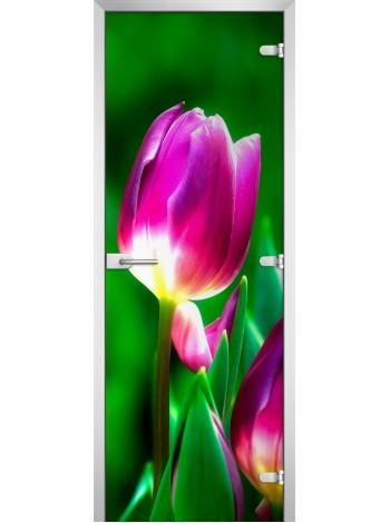 Стеклянная межкомнатная дверь Flowers-15