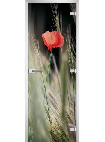 Стеклянная межкомнатная дверь Flowers-18