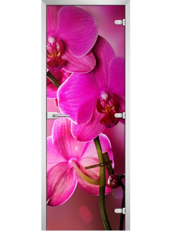 Стеклянная межкомнатная дверь Flowers-19