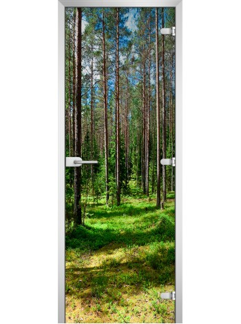Стеклянная межкомнатная дверь Forest-03