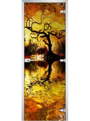 Стеклянная межкомнатная дверь Forest-04