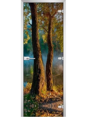 Стеклянная межкомнатная дверь Forest-06
