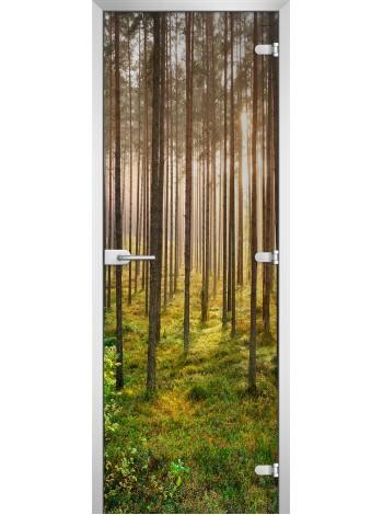 Стеклянная межкомнатная дверь Forest-13