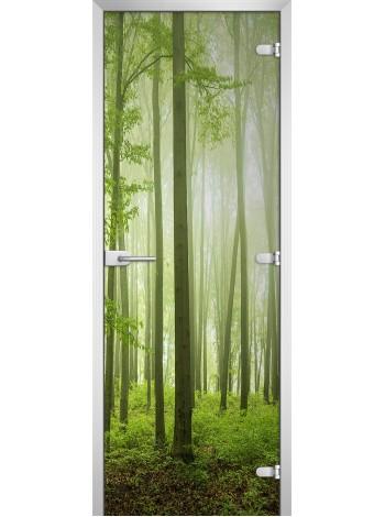 Стеклянная межкомнатная дверь Forest-15