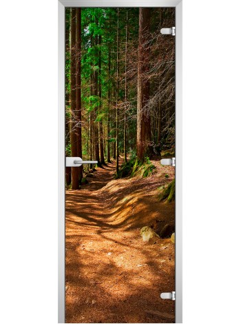 Стеклянная межкомнатная дверь Forest-17