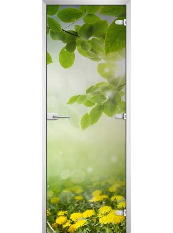 Стеклянная межкомнатная дверь Nature-19