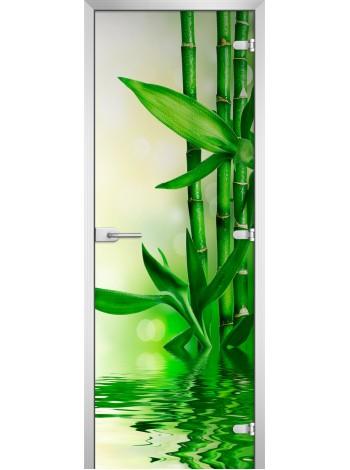 Стеклянная межкомнатная дверь Spa-03