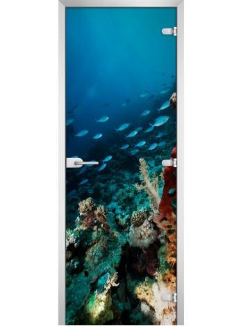 Стеклянная межкомнатная дверь Underwater World-11