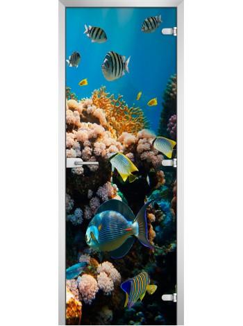 Стеклянная межкомнатная дверь Underwater World-14