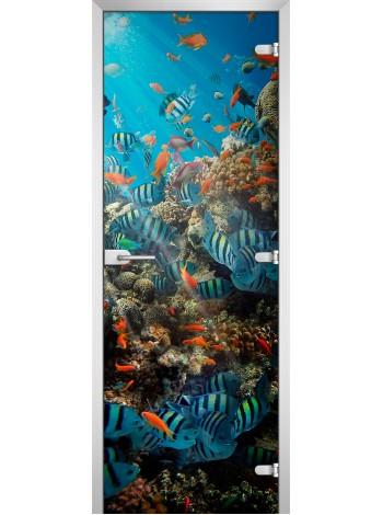 Стеклянная межкомнатная дверь Underwater World-16